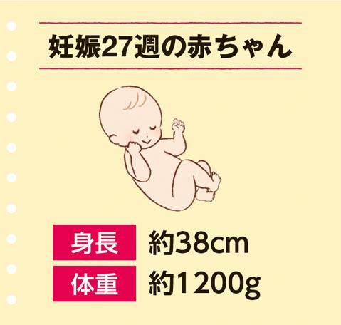 眠い 妊娠 中期